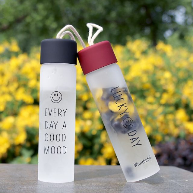 300 ml Frosted Glass Portable Water Bottle
